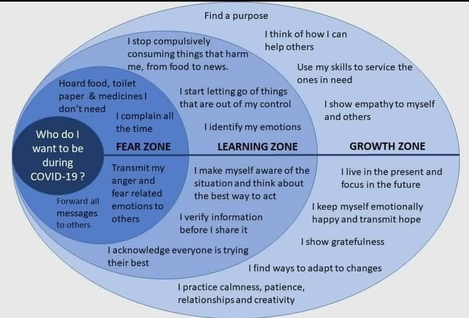 Covid-19 infographic, fear zone, learning zone, growth zone, possible responses to Covid-19 outbreak